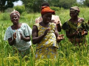 Bénin: la décentralisation, l'urgence et la pauvreté, obstacles au genre