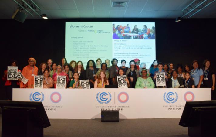 Le groupe Femmes et genre lors de la COP 20
